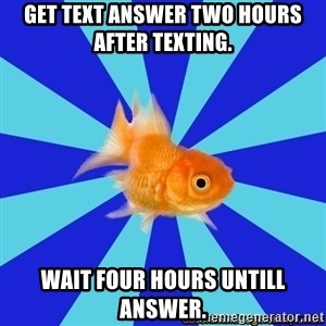 Absentminded Goldfish - get text aNSWER TWO HOURS AFTER TEXTING. WAIT FOUR HOURS UNTILL ANSWER.