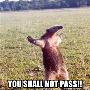 Anteater - You Shall not pass!!