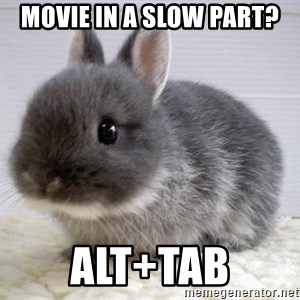 ADHD Bunny - movie in a slow part? alt+tab