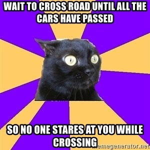 Anxiety Cat - Wait to cross Road until all the cars have passed So no one stares at you while crossing