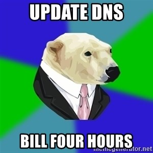 Polar Employee Bear - UPDATE DNS BILL FOUR HOURS