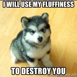 Baby Courage Wolf - I WILL USE MY FLUFFINESS TO DESTROY YOU