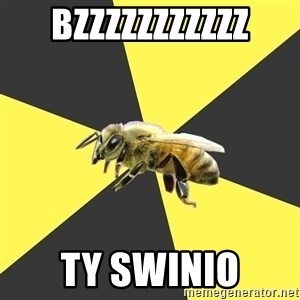 British High School Honeybee - bzzzzzzzzzzz ty swinio