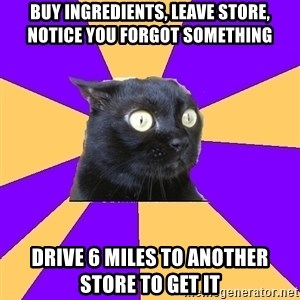 Anxiety Cat - buy ingredients, leave store, notice you forgot something drive 6 miles to another store to get it