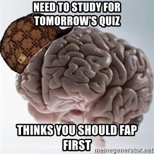 Scumbag Brain - Need to study for tomorrow's quiz thinks you should fap first