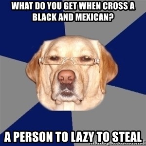 Racist Dawg - what do you get when cross a black and mexican? a person to lazy to steal