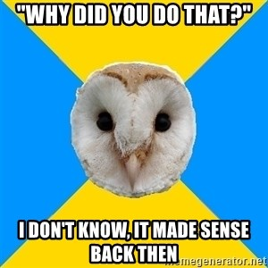"Bipolar Owl - ""WHY DID YOU DO THAT?"" I DON'T KNOW, IT MADE SENSE BACK THEN"