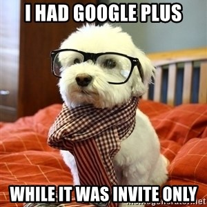 hipster dog - i had google plus while it was invite only
