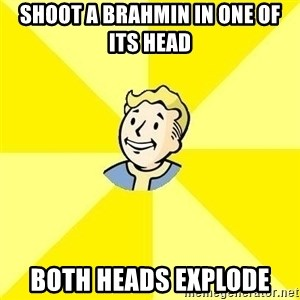 Vault Boy - shoot a brahmin in one of its head both heads explode