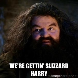 Yer A Wizard Harry Hagrid - WE'RE GETTIN' SLIZZARD HARRY