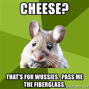 Prospective Museum Professional Mouse - Cheese? that's for wussies.  pass me the fiberglass.
