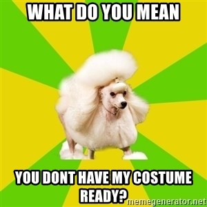Pretentious Theatre Kid Poodle - What do you mean you dont have my costume ready?