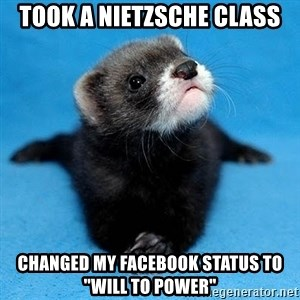 "Philosophy Major Ferret - took a NIETZSCHE class changed my facebook status to ""will to power"""