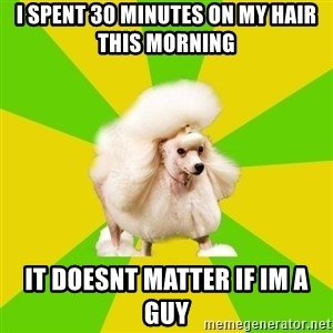 Pretentious Theatre Kid Poodle - i spent 30 minutes on my hair this morning it doesnt matter if im a guy