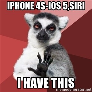 Chill Out Lemur - iphone 4S-IOS 5,SIRI i have this