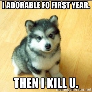 Baby Courage Wolf - i ADORABLE FO FIRST YEAR. THEN I KILL u.