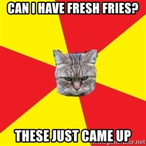 Fast Food Feline - Can I have fresh fries? These just came up