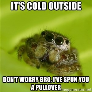 Spiderbro - It's cold outside Don't worry bro, i've spun you a pullover