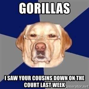 Racist Dawg - gorillas i saw your cousins down on the court last week