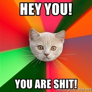 Advice Cat - Hey You! You are shit!