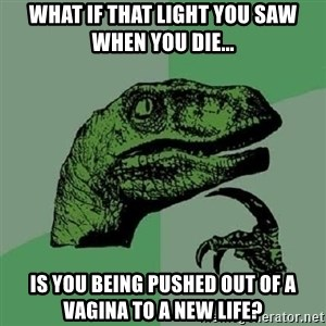 Philosoraptor - What if that light you saw when you die... is you being pushed out of a vagina to a new life?