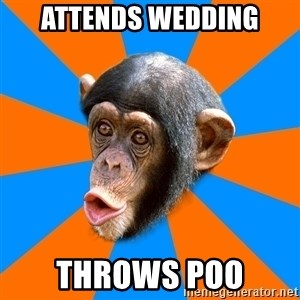 Socially Primitive Chimpanzee - attends wedding throws poo