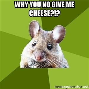 Prospective Museum Professional Mouse - WHy you no give me cheese?!?
