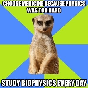 Med Student Meerkat - choose medicine because physics was too hard study biophysics every day