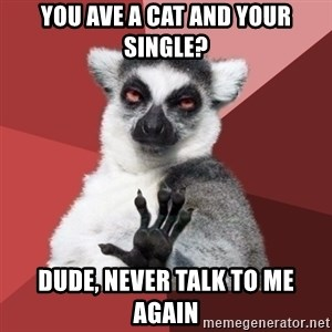 Chill Out Lemur - YOU AVE A CAT AND YOUR SINGLE? DUDE, NEVER TALK TO ME AGAIN