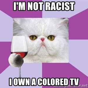 Art History Major Cat - I'm not racist I own a colorED TV
