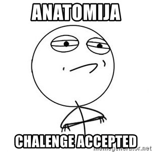 Challenge Accepted HD 1 - anatomija chalenge accepted