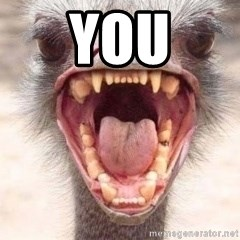 Angry White Ostrich - You