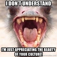 Angry White Ostrich - I don't understand I'm just appreciating the beauty of your culture!