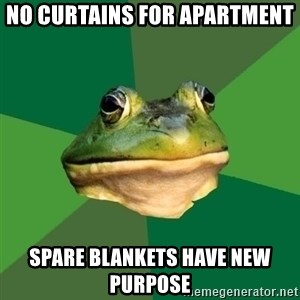 Foul Bachelor Frog - no curtains for apartment spare blankets have new purpose