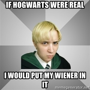 Socially Awkward Potterhead - if hogwarts were real i would put my wiener in it