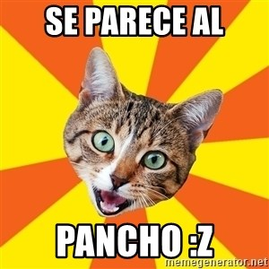 Bad Advice Cat - se parece al pancho :Z