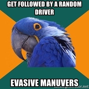 Paranoid Parrot - Get followed by a random driver evasive manuvers