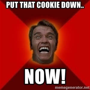 Angry Arnold - put that cookie down.. NOW!
