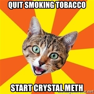 Bad Advice Cat - quit smoking tobacco start crystal meth