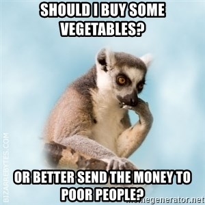 Lamenting Lemur - should i buy some vegetables? or better send the money to poor people?