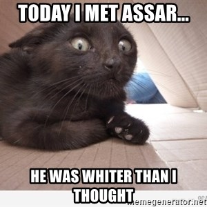 Paranoid cat - today i met assar... he was whiter than i thought