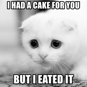 Sadcat - I had a caKE FOR YOU BUT i EATED IT