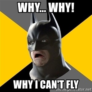 Bad Factman - why... why! why i can't fly