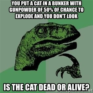 Philosoraptor - you put a cat in a bunker with gunpowder of 50% of chance to explode and you don'T look is the cat dead or alive?