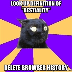 "Anxiety Cat - look up definition of ""bestiality"" delete browser history"
