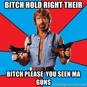 Chuck Norris  - bitch hold right their bitch please  you seen ma guns
