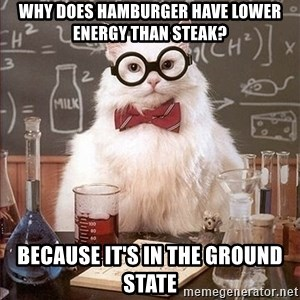 Science Cat - Why does hamburger have lower energy than steak? Because it's in the ground state