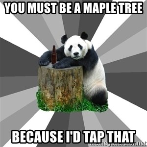 Pickup Line Panda - you must be a maple tree because i'd tap that