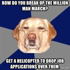 Racist Dawg - How do you break up the million man march? Get a helicopter to drop job applications over them.