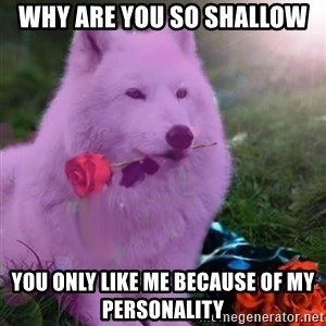 Don Courage Wolf - why are you so shallow you only like me because of my personality